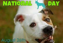 National Dog Day (August 26th) / National Dog Day is celebrated August 26th annually and serves to help galvanize the public to recognize the number of dogs that need to be rescued each year, and acknowledges family dogs and dogs that work selflessly each day to save lives, keep us safe and bring comfort.
