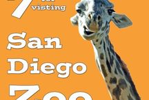 Travel {San Diego} / San Diego travel tricks and tips, places to go and things to see and do.