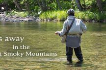 Fishing in the Great Smoky Mountains / Fishing for trout in a rushing mountain stream or for small mouth bass and crappy in a clear blue mountain lake in the Smoky Mountains is a great way to spend your vacation!