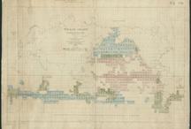 Seltenes und Neuentdeckungen / by landkartenindex (en: mapsindex)