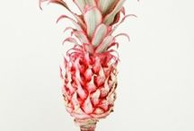 Pineapple Crush / by Mary Beth Burrell