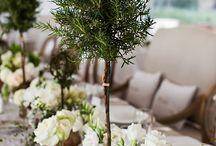 Greens, Herbs & Topiaries ~ weddings