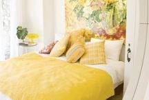 Guest room / by Suzeana Barrera
