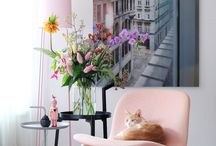 Pink interiors / Pink is the latest trend in home decor and interior design, have a look at these beautiful creative ideas on how to incorporate pink to your home decor