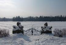 Winter at the Schloss / Schloss Leopoldskron in the winter