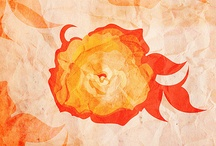 Patterns illustration by my