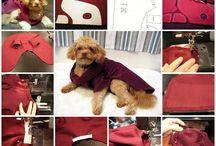 Pets craft ideas / by melanie smith