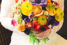 Farebná svadba