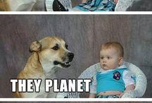 Baby + Animal Love ❤️