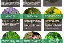 Plantemedicin