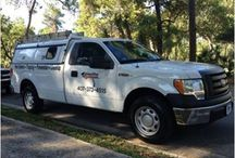 #Emergency Pest Control Orlando fl