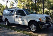 #Emergency Pest Control Orlando fl