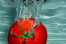 Tomatoes / by Diane Pecoraro