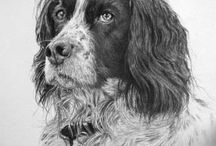 Man's Best Friend / Drawings and paintings of dog's by Stephen Alport