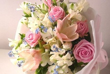 Buy Flowers Online, Buy Cake Online, Send Flowers to India / Buy flowers online, buy cake online with free shipping in India. Order now and send flowers to India, cake to India for occasions like birthday, wedding, anniversary, valentine, mothers day, fathers day, new year, funeral and many more. http://www.flowerscakesonline.com