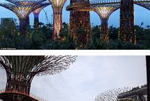 Malasia & Singapore