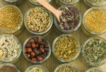 Herbology & Home Remedies