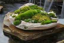 crear un jardin
