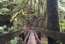 Hiking After 50 / Hiking Through Midlife To Explore and Stay Fit