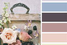 Paleta de colores / Salon
