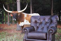 Mayo Furniture