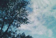 doğa fotoğrafı