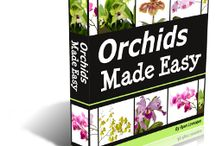 ORCHIDS MADE EASY