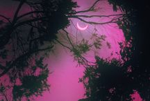 Moon Photos / by Marilyn Himelick