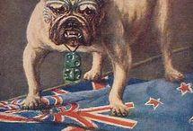 History NZ