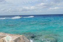 Caribbean Castaway / The Caribbean + More