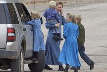 The FLDS case