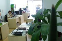 Our Coworking Center / Here is a peak inside our office location in Gracia!