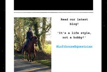 Lofthouse Equestrian Newsletters! / Check out Lofthouse Equestrians Newsletters updating you on all things horsey! Would you like to receive regular emails? Sign up via our website!  www.lofthouseequestrian.co.uk