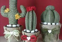 cactus, succulente and flower