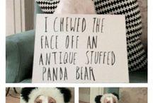 Dogs !!  ...you gotta love them :))
