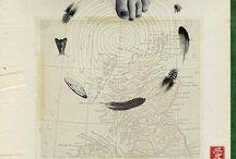 :: Art Survey: Wild Goose Chase/Fiona Watson