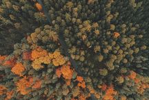 Otoño / Imágenes con dron del otoño