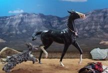 Model horses / by Metropolisphantom
