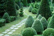 Topiary Home Garden