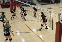 Women's Varsity Volleyball - January 24, 2015 / Canadore Panthers vs. Fleming