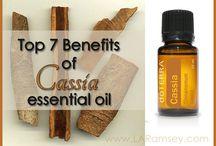 Essential oils / by Jamie Weiss