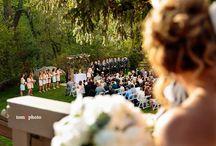 Favorite Wedgewood Wedding Moments!