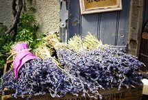 Lavender Mooi goed