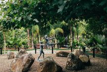 AUCKLAND - THINGS TO DO