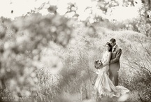 Weddings / by Michael Victorick