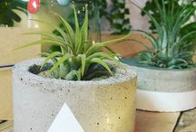 Concrete creations by Jewel & Paper
