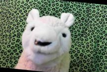 Christian Puppet Shows For Kids / Christian Puppet Shows for kids. / by Church House Collection