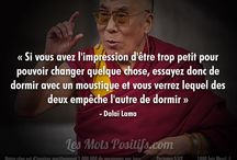 Citation et sagesse