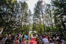 2016 wedding stories