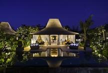 Java Bali Sanctuaries / by Lili Lily